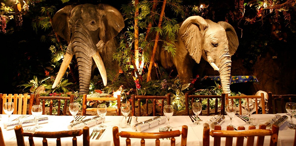 Rainforest Café at Dubai Mall