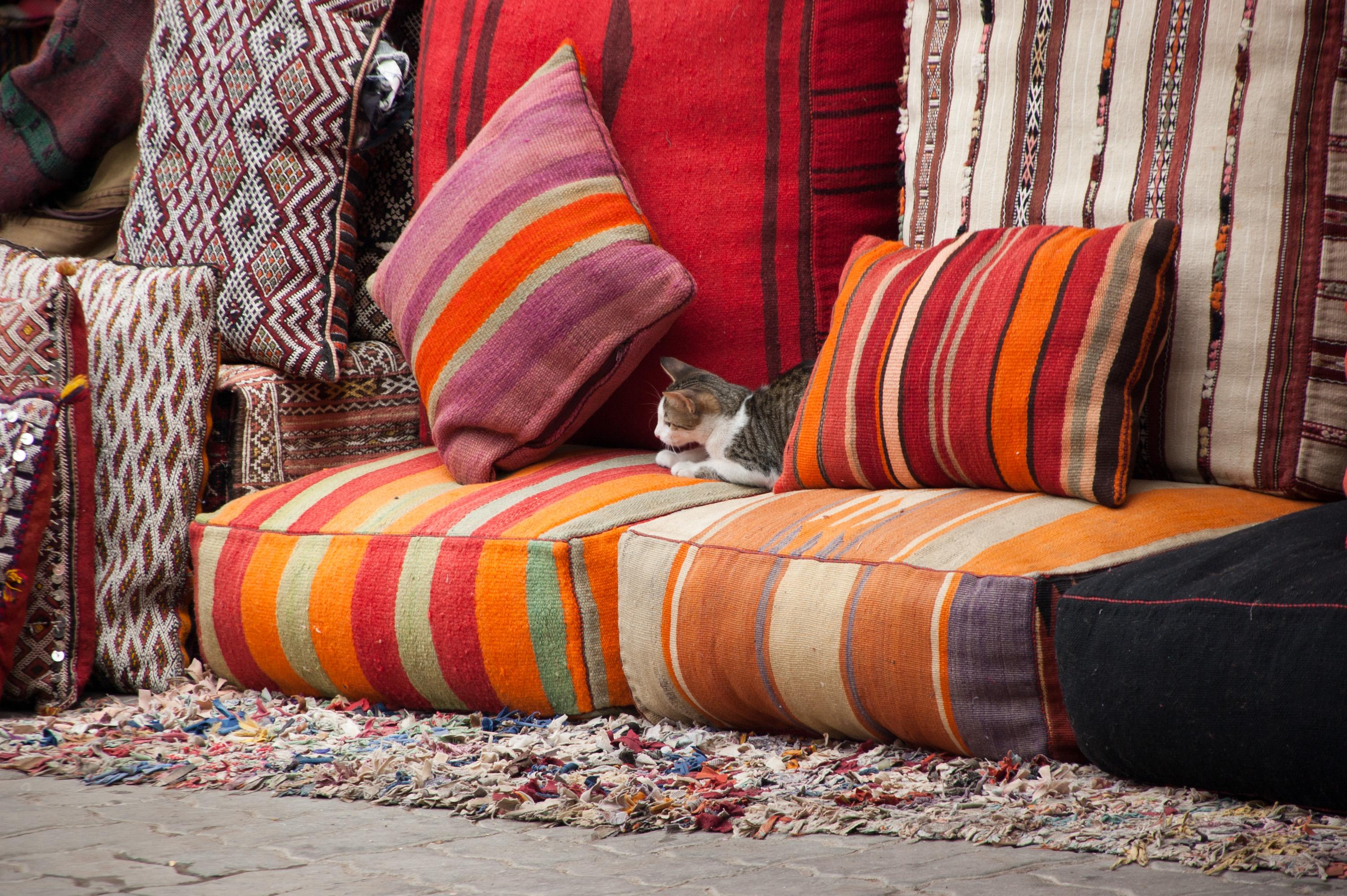 Kitten_among_sofaThrows