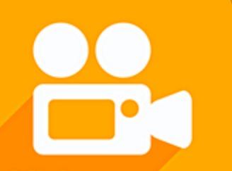 vidyo app