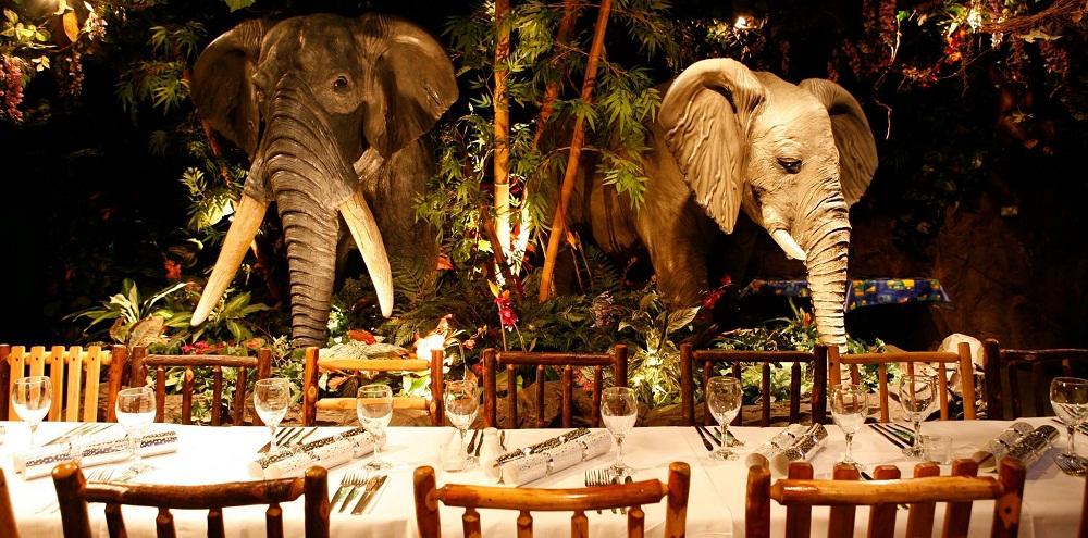 Rainforest Café at Dubai Mall