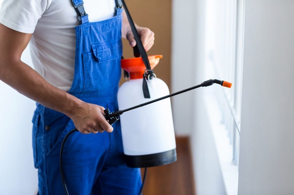 Purpose of pest control, Why is pest control necessary