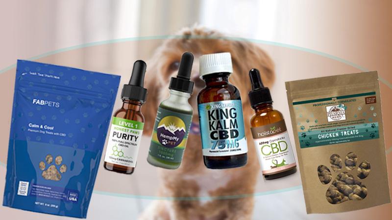 CBD for Dogs, Best CBD dog treats